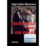 Memoriile unui om prost (eBook)