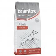 Briantos Protect + Care ração para cães - Pack económico Senior/Light Weight & Care (2 x 14 kg)
