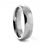 Fort Tempus Traditionele Zilveren Titanium Ring
