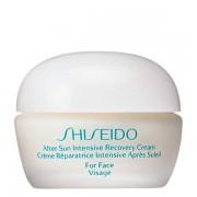 Shiseido Sun Care After Sun Intensive Recovery Cream 40 ml