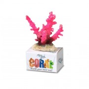 Coral Reef Module Staghorn Roze S