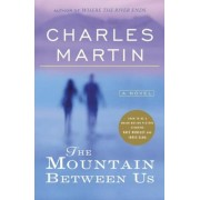The Mountain Between Us, Paperback