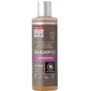 Urtekram Lavender Shampoo Organic - 250 ml