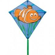 HQ Eddy Clownfish