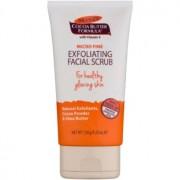 Palmer's Face & Lip Cocoa Butter Formula peeling suave de pele 150 g