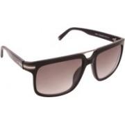 Tommy Hilfiger Wayfarer Sunglasses(Green)