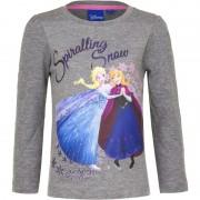 Disney Kindershirt Anna en Elsa grijs