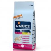Advance Maxi + 6 Senior con pollo y arroz - Pack % - 2 x 15 kg