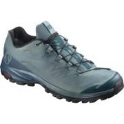 Salomon OUTpath GTX® Waterproof Hiking & Trekking Shoes For Men(Green, Blue)