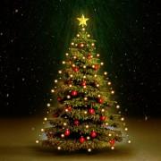 vidaXL Коледни лампички мрежа 150 LED закрито и открито IP44 150 см