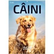 Calendar de perete - Caini 2019 - A4