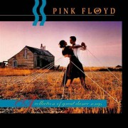 Pink Floyd - Collection of Great Dance Songs (0724352624522) (1 CD)
