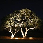 LightsOn Indus – Trädgårdslampa 12V, 16W
