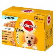 96x100g Pedigree Junior saquetas em gelatina