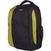 Zwart GURNER 25 L Medium Laptop Backpack(Black, Green)
