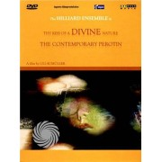Video Delta The Hilliard Ensemble - Thy kiss of a divine nature - The contemporary Perotin - DVD