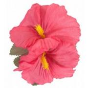 Hårblomma hawaii rosa