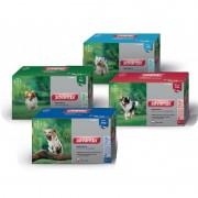 Bayer Advantix 250 (10-25 Kg) 24 Pipetas