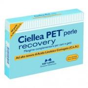 N.B.F. Lanes Srl Ciellea Pet Recovery 60prl 40