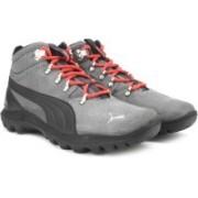 Puma Silicis Mid DP Outdoor Shoes For Men(Grey)