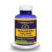 Magneziu organic cu vitamina b complex 120cps HERBAGETICA