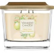 Yankee Candle Elevation Citrus Grove vonná svíčka střední 347 g