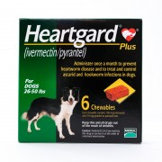 Heartgard Plus (Green) Chewables for Dogs 26-50lbs(12-22kg), 6 Pack
