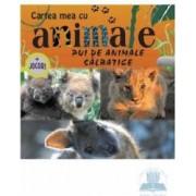 Pui de animale salbatice - Cartea mea cu animale + Jocuri