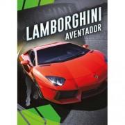 Gek op auto's!: Lamborghini Aventador - Calvin Cruz