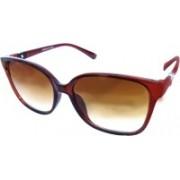 Forty Hands Wayfarer Sunglasses(Brown)