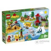 LEGO® DUPLO® Town 10907 Animalele lumii