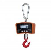 Crane Scale - 300 kg / 100 g