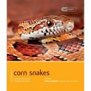 Pet Expert Corn Snake Pet Expert Book