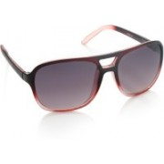 Allen Solly Aviator Sunglasses(Violet)