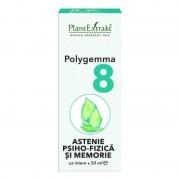Polygemma nr.8 Astenie psiho-fizica si memorie