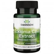 Swanson Ecklonia Cava Extract 53 mg 30 kapslí