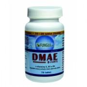 DMAE B-FORTE 70 tablet – AKCE 50 + 20 tablet ZDARMA !