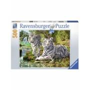 Puzzle Tigri Albi, 500 Piese Ravensburger