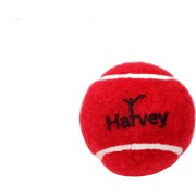 Cricket Tennis Heavy Weight Balls Pack of 6