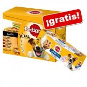 """Pedigree """"Los Clásicos"""" 48 x 100 g + 1 Dentastix Dos veces a la semana ¡gratis! - 48 x 100 g en gelatina + 1 Dentastix 2x por semana Mediano"""
