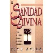 Sanidad Divina: Divine Healing, Paperback