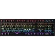Tastatura Gaming Mecanica Zalman ZM-K900M