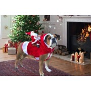 Shanghai Zhengxiang QicheZuling £12.99 for a dog Christmas outfit from hey4beauty
