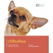 Dog Expert Chihuahua Dog Expert Book