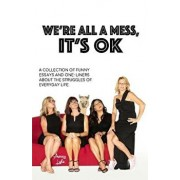 We're All a Mess, It's Ok: A Collection of Funny Essays and One-Liners about the Struggles of Everyday Life, Paperback/Amy Lyle