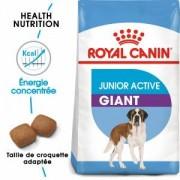 Royal Canin Giant Junior Active pour chien 15 kg