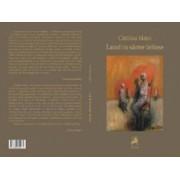 Lanul cu sarme intinse - Catalina Matei