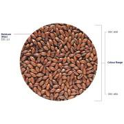 Ljus Chokladmalt 1 kg Hel