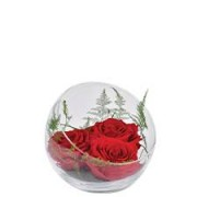 Interflora Rouge éternel