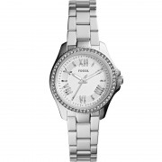 Ceas Fossil Cecile Small AM4576
